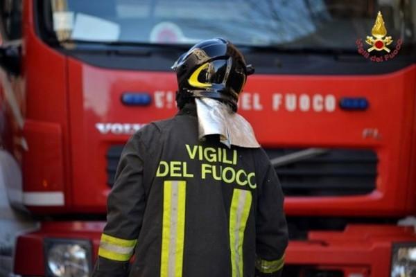 Micio in pericolo: salvato dai pompieri