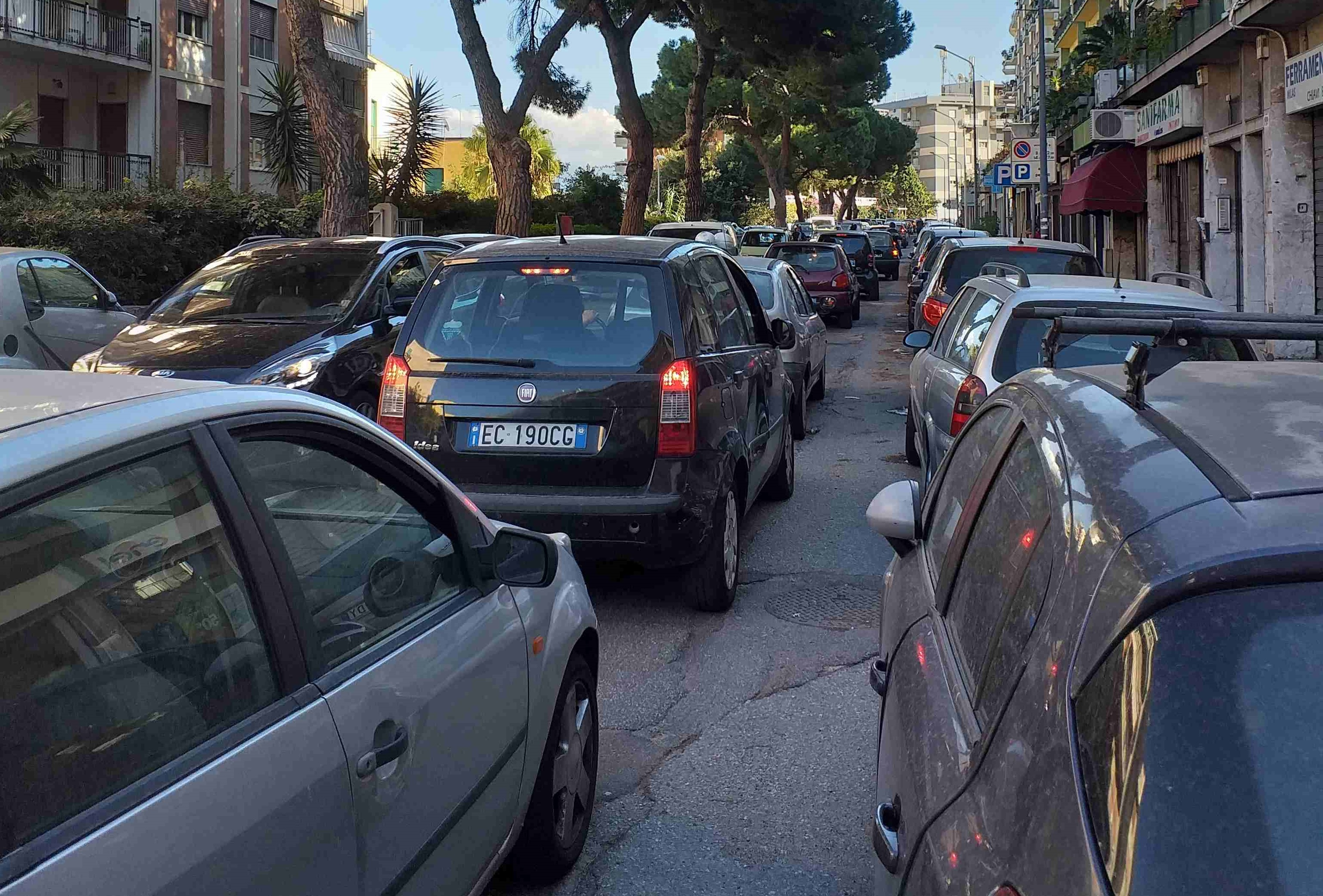 Interventi urgenti sulle alberature: possibili disagi sul viale Regina Margherita