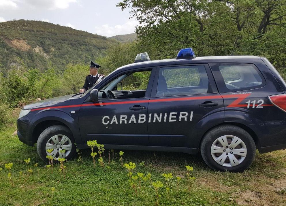 Rubano legname da area boschiva, padre e figlio arrestati dai carabinieri