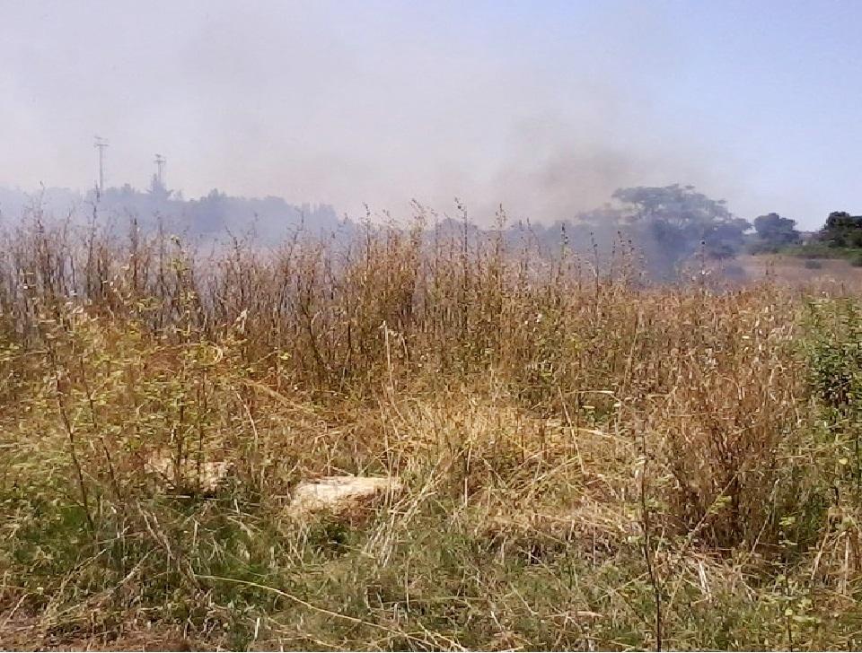Sant'Agata Militello, firmata ordinanza per prevenire gli incendi boschivi