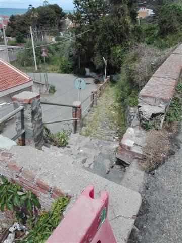 "San Saba, Biancuzzo: ""Necessaria scerbatura"""