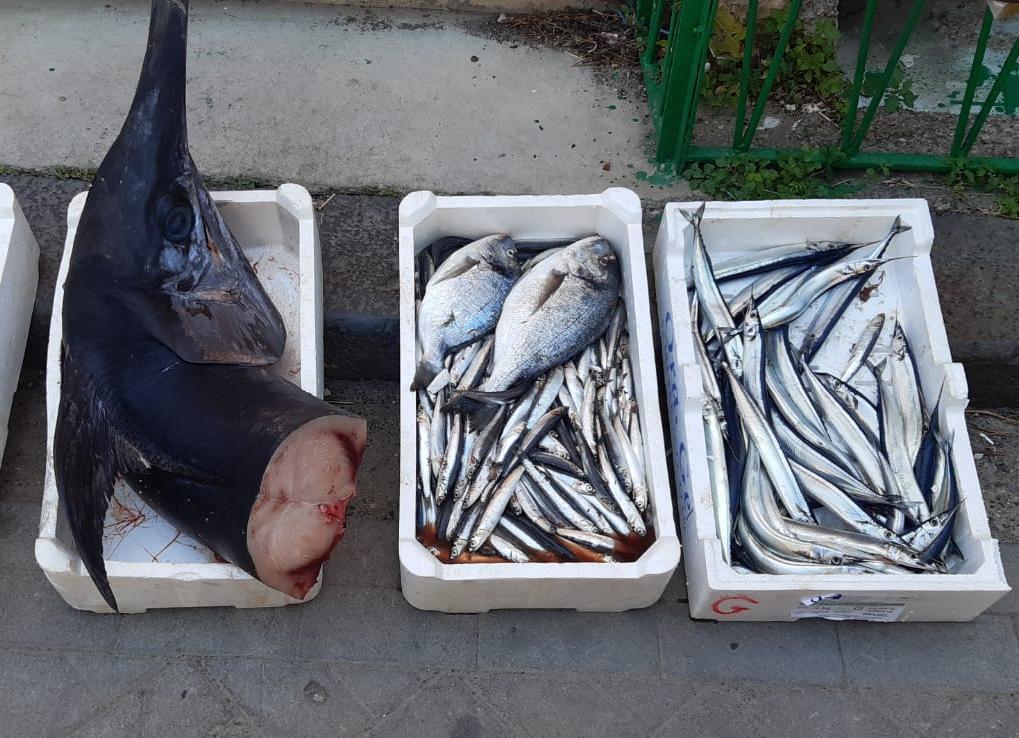 Ganzirri, sequestrato pesce ad ambulante