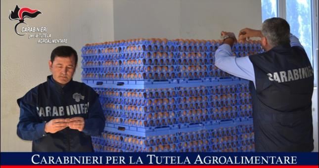 Agroalimentare, sequestro di merci anche a Messina
