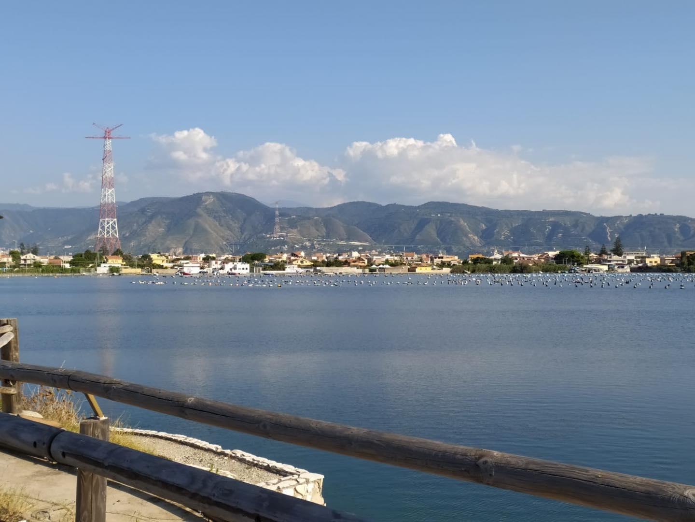 Torre Faro, maxi sequestro di ricci